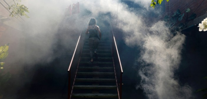 A woman walks through the fumes as Health Ministry employee fumigate against the Aedes aegypti mosquito to prevent the spread of the Zika virus in Soyapango, six km east of San Salvador, on January 21, 2016. Health authorities have issued a national alert against the Aedes Aegypti mosquito, because of the link between the Zika virus and microcephaly and Guillain-Barré Syndrome in fetuses. AFP PHOTO/Marvin RECINOS / AFP / Marvin RECINOS        (Photo credit should read MARVIN RECINOS/AFP/Getty Images)