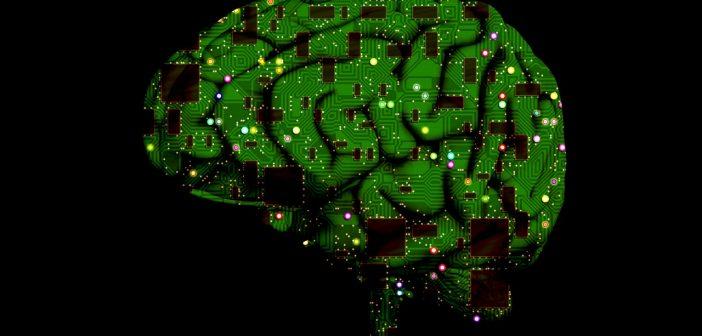 brain-1845944_1280