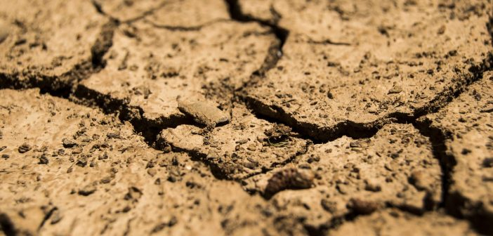 drought-780088_1280