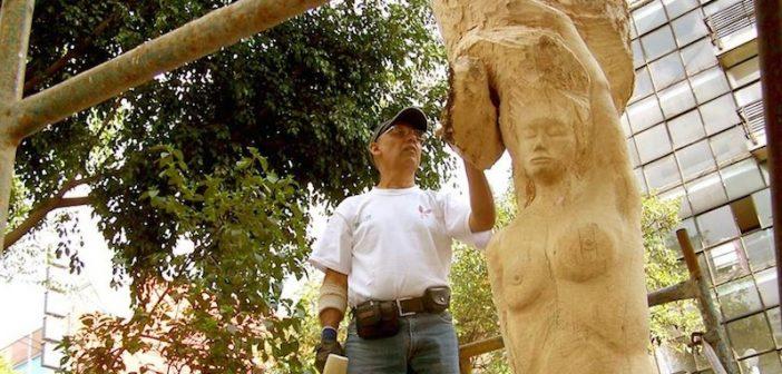 palomino escultor de árboles